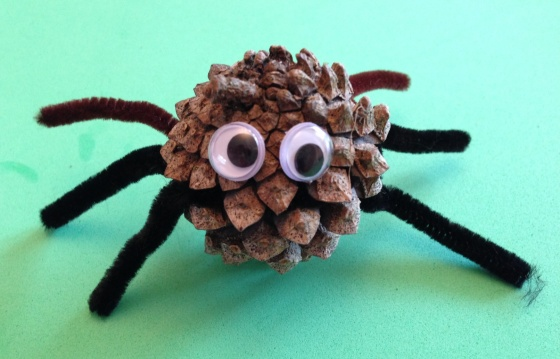 pine cone spider